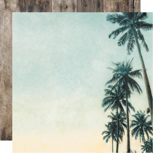 Paradise Found: Palm Trees